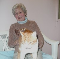 Cat cuddles at Rose Cottage Cattery